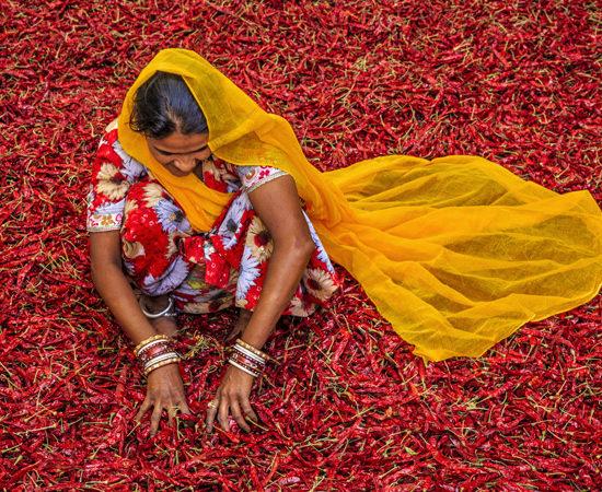 Bangalore Luxury Travel - Temples Spices Indian Tour - Luxury Tours - Tour of India