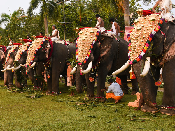 Bangalore Luxury Travel - Best of two cultures Indian Tour - Luxury Tours - India Tour